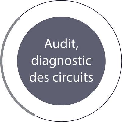 Audit diagnostic des circuits